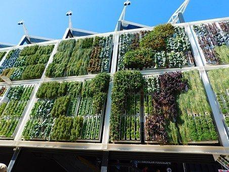 Jardines verticales, el nuevo paisajismo urbano